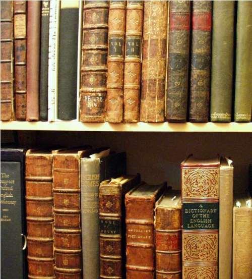 books02-619x685